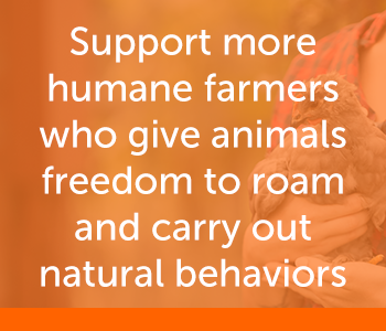 Support more humane farmers