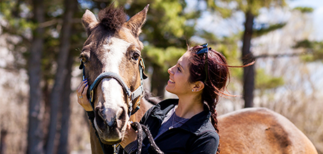 Join the ASPCA Horse Action Team!