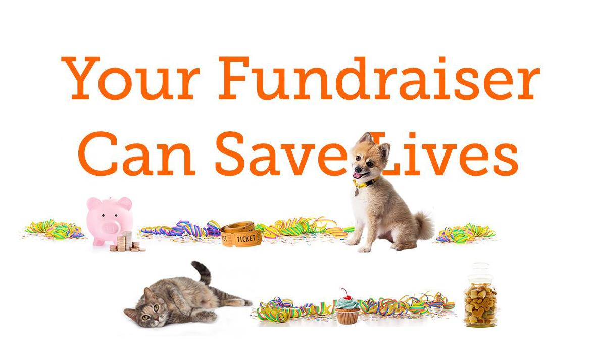 Team ASPCA Fundraiser Event
