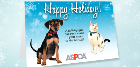 holiday honor gifts tribute donations send a card aspca