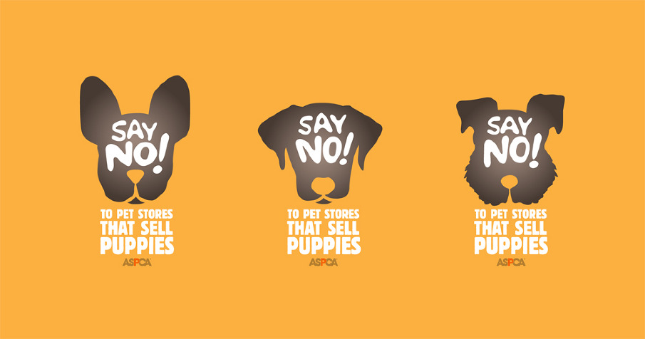 macs rock star pets campaign aspca