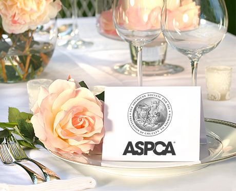 Wedding and special occasion favors l ways to give l aspca wedding and special occasion favors junglespirit Gallery