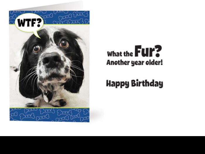 Aspca Christmas Cards 2020 Buddha Dog Card's Fundraiser | ASPCA