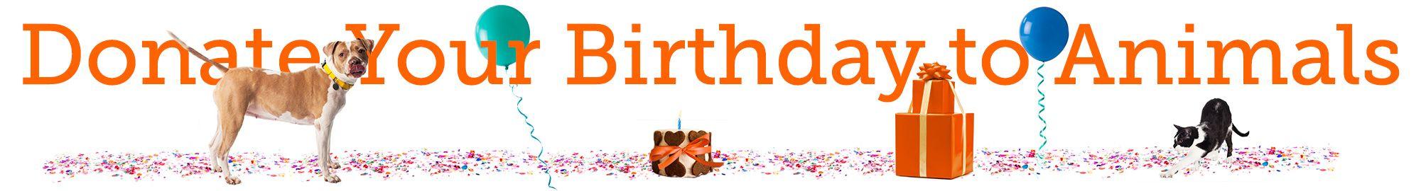 ASPCA Birthday Campaign